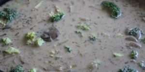 Healthy Recipe | Creamy Mushroom Fennel Soup